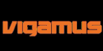 https://www.idraediting.com/wp-content/uploads/2021/06/LOGO-FONDAZIONE-VIGAMUS.png
